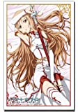 ブシロードスリーブコレクションHG (ハイグレード) Vol.457 ソードアート・オンライン 『アスナ』Part.2