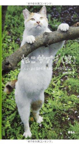 ねこサプリ(笑)人によく効くNEKO-PHOTO202