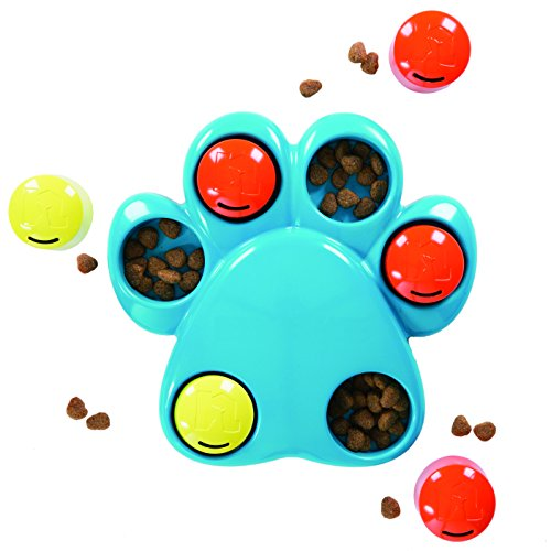 Dog Toy That You Hide Treat In