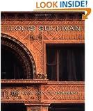 Louis Sullivan: The Function of Ornament (Norton Critical Studies in Art History)