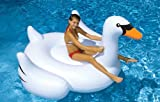 International Leisure Giant Swan
