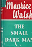 img - for The Small Dark Man book / textbook / text book