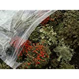 Appalachian Emporium's Large Terrarium Mix Moss & Lichen Variety Assortment British Soldier Pixie Cup Pityrea Live Lichens Moss 1 Pint Bag