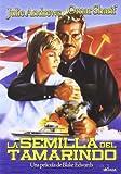 La Semilla Del Tamarindo [DVD]