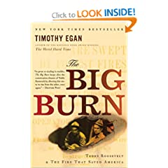 The Big Burn: Teddy Roosevelt and the Fire that Saved America by Timothy Egan