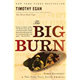 The Big Burn: Teddy Roosevelt and the Fire That Saved Americaby Timothy Egan