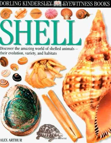 Eyewitness: Shell