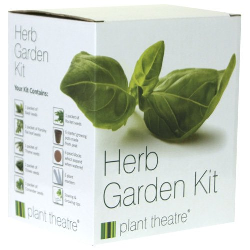 Herb Garden Seed Kit Gift Box - 6 Different Herbs