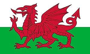 Pays de Galles Drapeau 20x30cm pour Diplomat-Flags Drapeau de Voiture