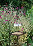 Hanging bird feeding station ( Bird feeding station - hanging bird)