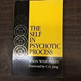 img - for The Self in Psychotic Process: Its Symbolization in Schizophrenia (Jungian Classics Series) book / textbook / text book