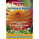 In Praise of Dahlias ~ Mario Abreu and Tom...