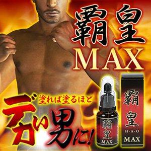 覇皇MAX