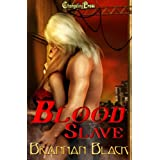 Viking Seduction 1: Blood Slave ~ Brannan Black