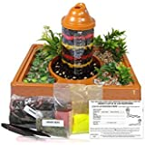 Kids Worm Farm Observation Kit With Mail-In Certificate for Live Worms