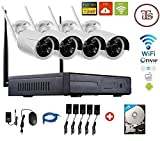Vintron VIN-IPK-G16-72-IB30 4-Ch Nvr (With 4 Bullet Cameras with Accesssories)