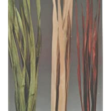 Green Floral Crafts Palm Stalks 4' x 1.5