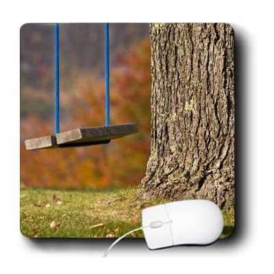 SP 3dRose LLC 8 x 8 x 0.25 Inches Mouse Pad, Maine Bethel Wooden Swing Hangs From A Tree Jaynes Gallery (mp_90550_1) at Sears.com