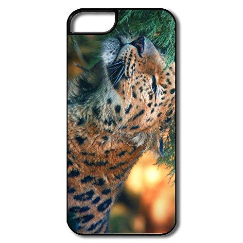 Art Momax Cute Amur Leopard Iphone 5S Skin