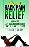 Quick Back Pain Relief: A Guide to Easy Back Pain Exercises That Brings Relief