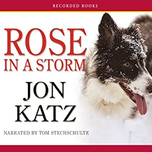 Rose in a Storm | [Jon Katz]