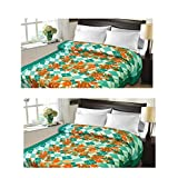 Christy's Collection Super Soft Printed 2 Piece Cotton Blend AC Double Blanket - Multicolor - B0166E7SLC