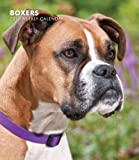 Boxers 2013 Hardcover Weekly Engagement