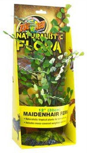 Zoo-Med-Maidenhair-Fern-Plante-en-Plastique-pour-Terrarium-30-cm