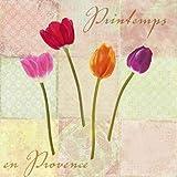 Printemps en Provence by Dellal, Remy - Fine Art Print on PAPER : 45 x 45 Inches