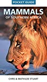 Acquista Mammals of Southern Africa Pocket Guide