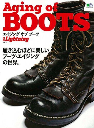 別冊 Lightning 2017年Vol.171 大きい表紙画像
