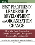 img - for Best Practices in Leadership Development and Organization Change: How the Best Companies Ensure Meaningful Change and Sustainable Leadership (J-B US non-Franchise Leadership) book / textbook / text book