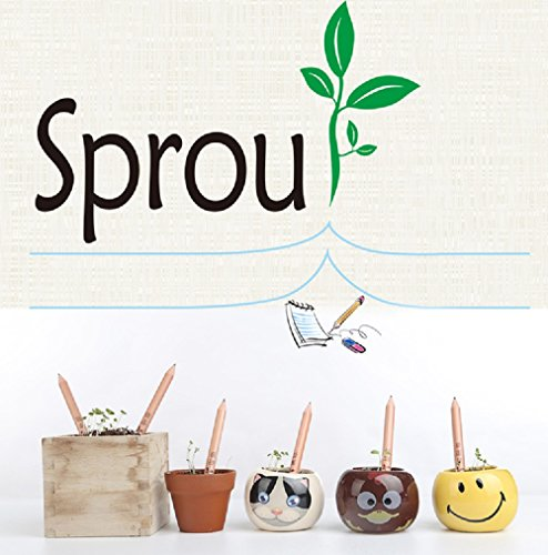 sprout-lapiz-hierbas-pack-fancyus-plantable-lapiz-con-semillas