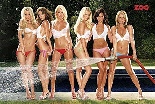 Girls - Zoo Hose - Akt Poster Erotik Poster nackte hot Girls schöne Frauen - Grösse 91,5x61 cm + 1 Ü-Poster der Grösse 61x91,5cm