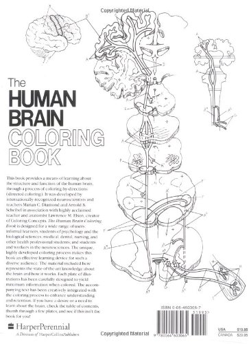 Biology Book :: The Human Brain Coloring Book (Cos, 306) from ...