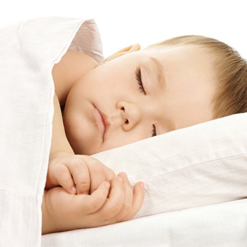 Organic Comfort Alternative Down Comforter Crib size (Down Alternative Baby Comforter compare prices)