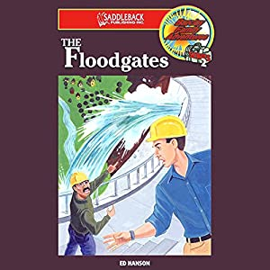 The Floodgates Audiobook