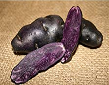 buy Fingerling Potato Purple Peruvian - Certified Organic Seed Potato Heirloom