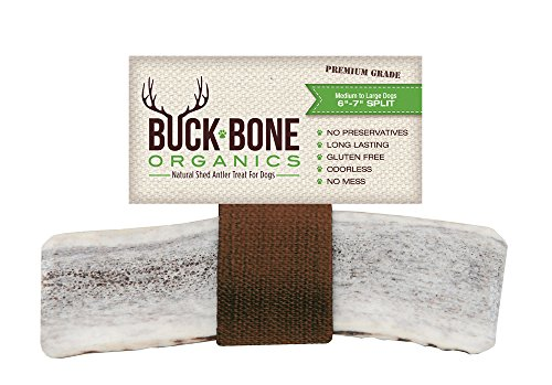 Elk Antler Dog Bone, Organic Chew ~ Large Split 6-7