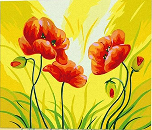LB Diy Digital Oil Painting And Paint By Number Kits Red Flower 16X20 Inch