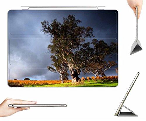 irocket-ipad-mini-1-2-3-case-transparent-back-cover-vineyard-under-stormy-skyies-auto-wake-sleep-fun