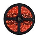 HitLights Red SMD3528 LED Light Strip - 300 LEDs, 16.4 Ft Roll, Cut to length - 82 Lumens / 1.5 Watts per foot, Requires 12V DC
