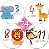 "24 Pack of 4"" Premium Baby Monthly Stickers By KiddosArt. 1 Happy Animal Sticker Per Month of Your Baby's First Year Growth and Holidays. Month Sticker for Baby, Boy or Girl. Milestone Onesie Stickers"