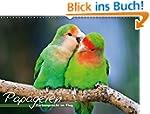 Papageien - Farbenpracht im Flug (Wan...