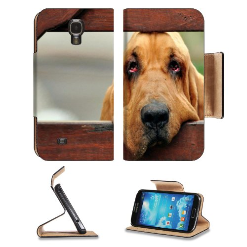 Wireless Pet Fence Reviews