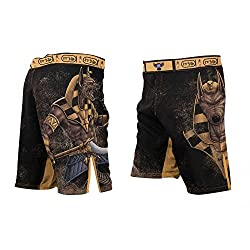 Raven Fightwear Anubis MMA Fight Shorts