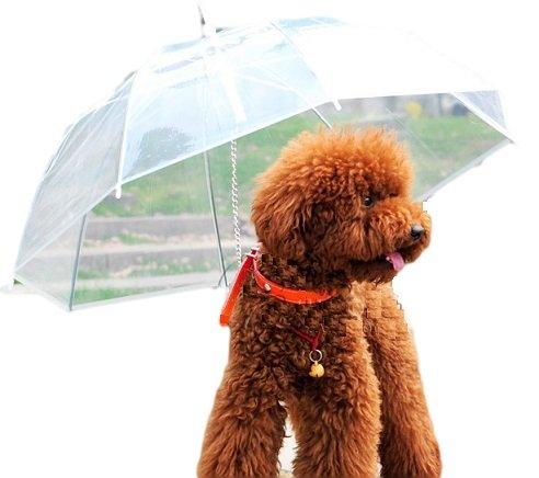 犬用 傘 ペットアンブレラ 雨天時お出かけのお供に アイディア商品 アンブレラハンガー付