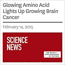 Glowing Amino Acid Lights Up Growing Brain Cancer Other by Nathan Seppa Narrated by Mark Moran