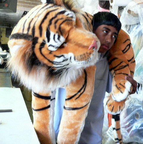 GIANT ORANGE TIGER 44