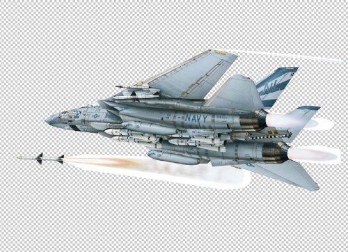 "Military Aircraft Wall Decals - Grumman F-14A 48"" Removable Wall Graphic"